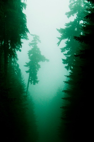 Olympic NP_11