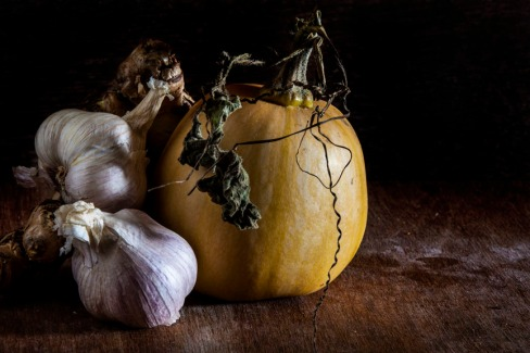 Winter Pumpkin_013